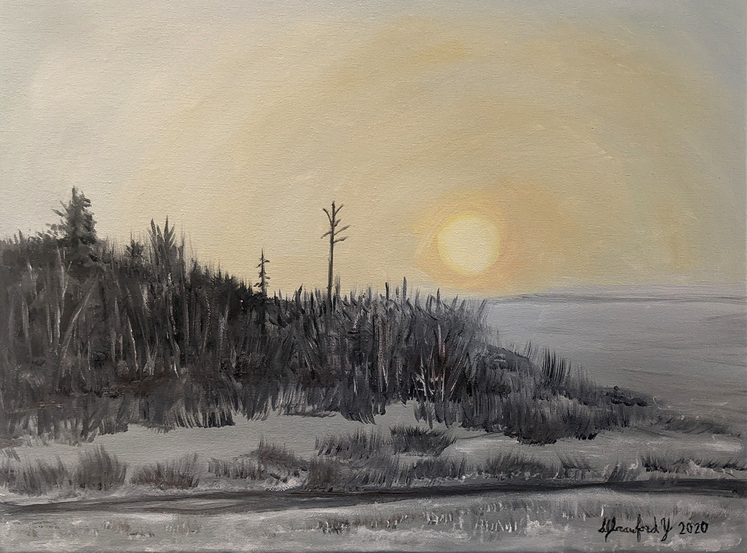 Winter Sun by Susan Crawford-Young